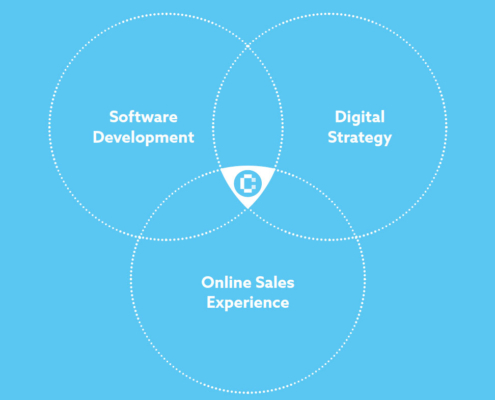 Digital Strategy - Software Development - Online Sales Experience